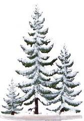 Zinnfigur Fichtengruppe im Winter, zum Stellen