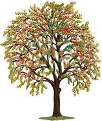 Zinnfigur Wilhelm Schweizer Kirschbaum im Herbst, zum Stellen